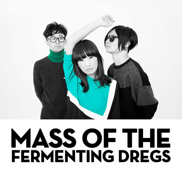 MASS OF THE FERMENTING DREGS